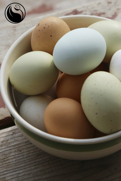 glowing_skin_eggs
